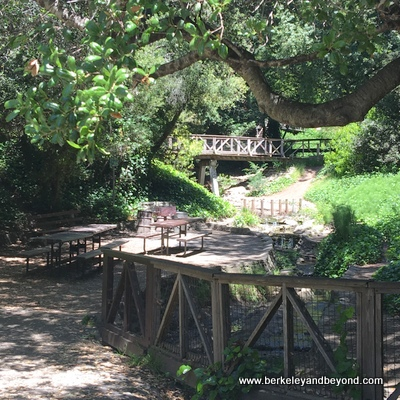 BERKELEY-Coordinices Park-picnic area by stream+waterfall-c2018 Carole Terwilliger Meyers-400-pix