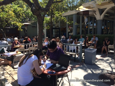 BERKELEY-Caffe Strada-outside-c2014 Carole Terwilliger Meyers-iPhone-400pix