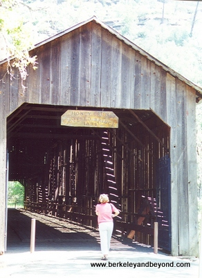 CHICO--PARADISE-Honey Run Covered Bridge-scan-400pix(cCaroleTerwilligerMeyers)
