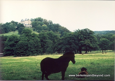 Fairy Tale Road-Sababurg-Sleeping Beauty Castle viewed from Tierpark Sababurg-scan-400pix(cCaroleTerwilligerMeyers)