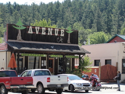 AVENUE OF GIANTS-MIRANDA-Avenue Cafe-c2015 Carole Terwilliger Meyers-400pix