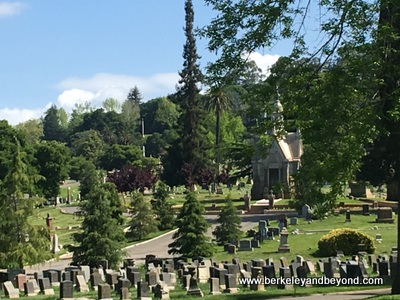 OAKLAND-Mountain View Cemetery-main section-c2017 Carole Terwilliger Meyers-400pix