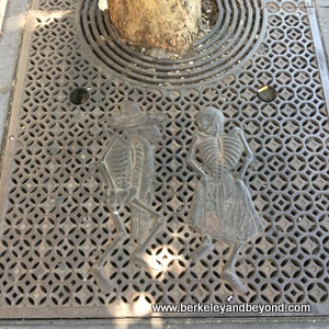 SF-Valencia St.-tree grates-dancing dead image-c2017 Carole Terwilliger Meyers-300pix