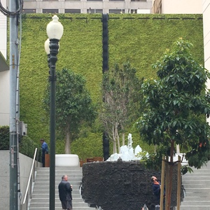 SF-Ruth Asawa fountain 2-c2017 Carole Terwilliger Meyers-300pix