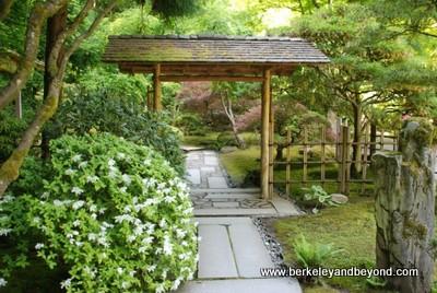Japanese garden portland image copyright john briggs