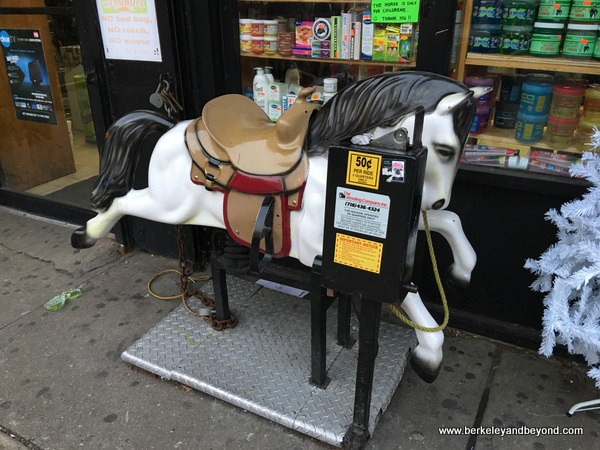 QUEENS-kiddie ride series-1-white horse-Jackson Heights-c2016 Carole Terwilliger Meyers-600pix