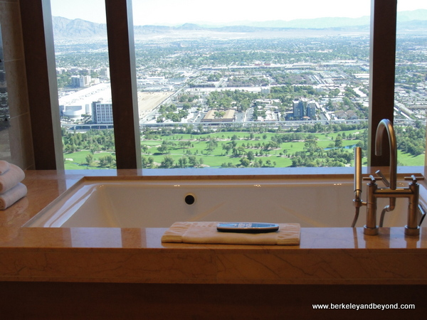 28.  loos with a view-U.S.-Las Vegas, Nevada-Venetian-Palazzo-c2015 Carole Terwilliger Meyers-600pix