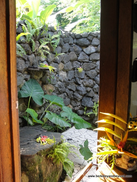 23-loos with a view-Fiji-Taveuni-Paradise Taveuni-outdoor shower-c2011 Carole Terwilliger Meyers-600pix