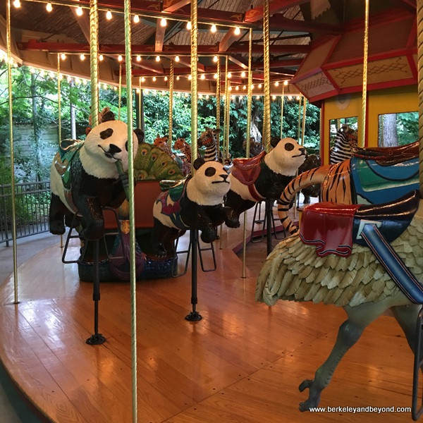 22-carousels-U.S.-Columbia-South Carolina-Riverbanks Zoo & Garden-endangered species carousel-pandas-c2017 Carole Terwilliger Meyers-600pix