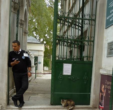 42-cat gallery-Turkey-Istanbul-with policeman-c Cacinda Maloney