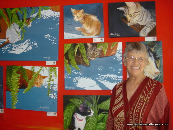 70-cat gallery-Mexico-Mazatlan-Art Tour-cat lady-c2009 Carole Terwilliger Meyers-600pix