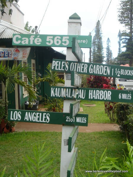signposts-HAWAII-Lanai City-c Carole Terwilliger Meyers