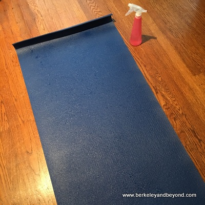 RECIPE-Yoga Mat Cleaner-mat-c2017 Carole Terwilliger Meyers-400pix