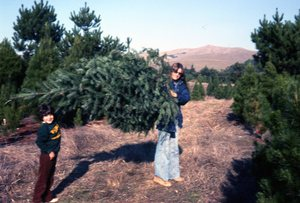 xmas-1978x-David+Deb-cutting tree-slide scan-x-300pix