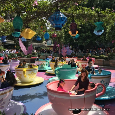 ANAHEIM-Disneyland-Mad Tea Party 1-c2016 Carole Terwilliger Meyers-400pix